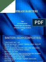 Klasifikasi Bak Comp 2011 BAKTERI