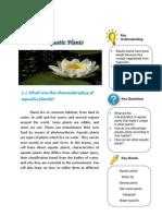 Aquatic Plants2