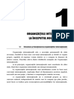Organizatiile Internationale