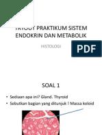 Tryout Praktikum Sistem Endokrin Dan Metabolik