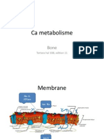 Metabolisme Calsium Kuliah 2013 Musculo