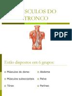 msculosdosmembrossuperiores2013-1-130329151235-phpapp01