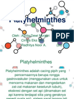 Platyhelminthes PPT !