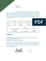 Estrcutura Molecular