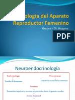 2.Fisiología del Aparato Reproductor Femeninoy ciclo mestrual (1)