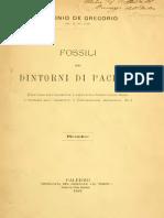 Antonio De Gregorio - Fossili dei dintorni di Pachino