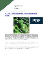 H2 Bio - Shedding Light On Photosynthesis FAQs