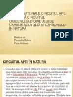 CICLURI NATURALE,CIRCUITUL APEI ÎN NATURĂ,CIRCUITUL OXIGENULUI,DIOXIDULUI DE CARBON,AZOTULUI