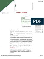 Calabaza vs Zapallo.pdf