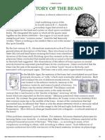 History of Brain