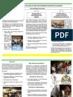 VSP Brochure