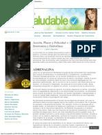 Adrenalina, Serotonina y Endorfinas «
