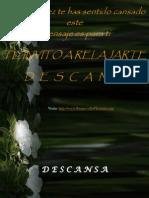 paz2[1]
