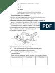 Ejercicios Tema 6