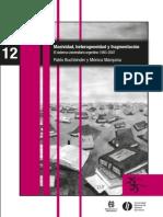 12 Masividad Hetrerogeneidad y Fragmentacion Buchbinder y Marquina