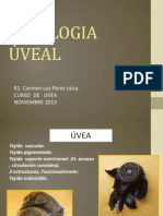 FISIOLOGIA UVEAL 2013