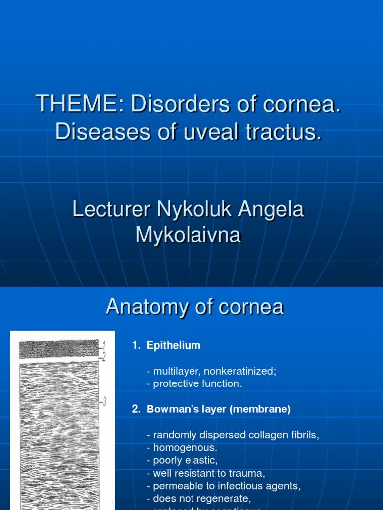Disorders of Cornea. | Cornea | Diseases Of The Eye And Adnexa