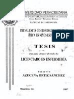 tesis-0255