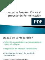 Etapas de Preparación en el proceso de Fermentación