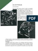 Ppujals - La Cabeza Del Rottweiler