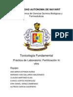 Reporte de Toxicologia (1)