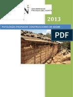 PATOLOGÍAS PROPIASDE CONSTRUCCIONES DE ADOBE