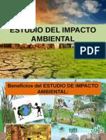 ESTUDIO DEL IMPACTO AMBIENTAL.pptx
