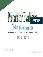 Preparator Evaluarea Nationala 2014
