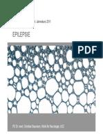 11-14_baumann_epilepsie.pdf