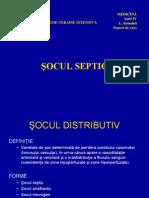 Socul septic