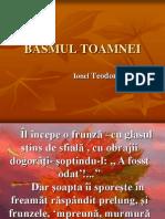 Basmul Toamnei (1)
