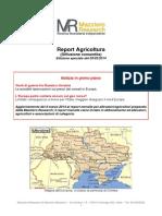 Venti di guerra fra Russia e Ucraina; conseguenze su grano e mais