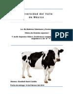 Aspecto clinico-zootecnicos complementarios a la asignatura de C de Gs Es Tema 1.pdf