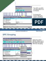 SPC CIC Grouping