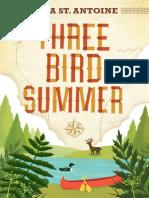 Three Bird Summer by Sara St. Antoine Chapter Sampler