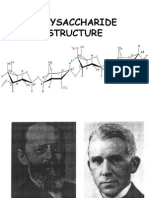 D24BT1_Polysaccharide