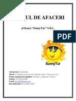 Planul de Afaceri SunnyTur
