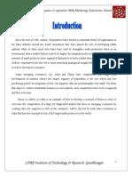 8ba06_amul Marketing Report