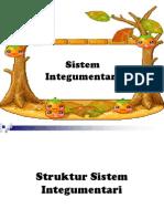 12 Sistem Integumentari