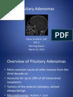 3.19.10 Sunderlin Pituitary Adenoma