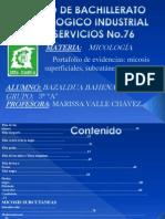 MICOLOGIA PORTAFOLIO.ppsx