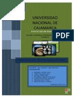 Fosiles en El Peru9999999