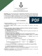 d'Arpa Responsabile v Settore Febbr 2010 Bando e Disciplinare Illuminazione (1)