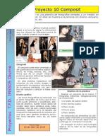 Proyecto 10 Composit.pdf