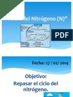 Ciclo del Nitrógeno (N)