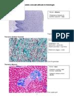 Coloratii histologice