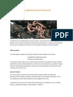 Lombricultura y aplicaciones de humus de lombriz.docx
