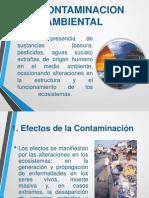 Contaminacion Ambiental 2