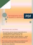 Determinantes Sociales en El Desarrollo Biopsicosocial