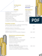 CV version française